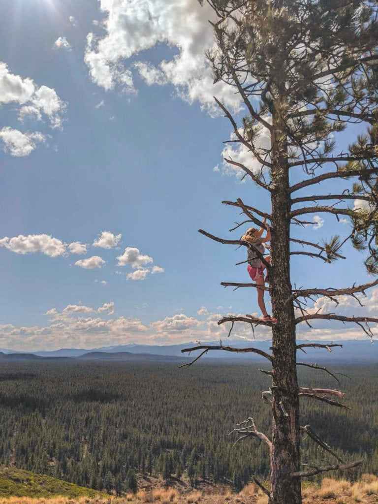 A view of Bend and the Cascade range from the top of Bessie Butte.