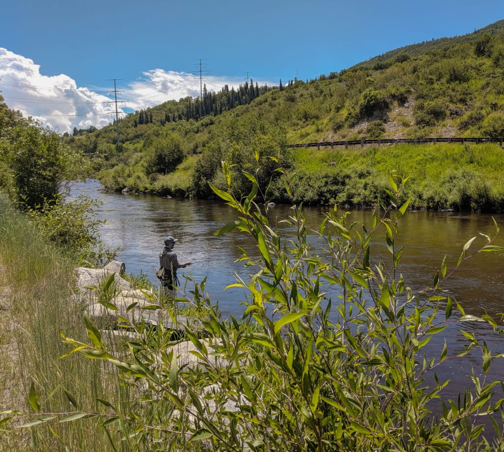 Fishing on the Yampa River - Steamboat Springs Summer