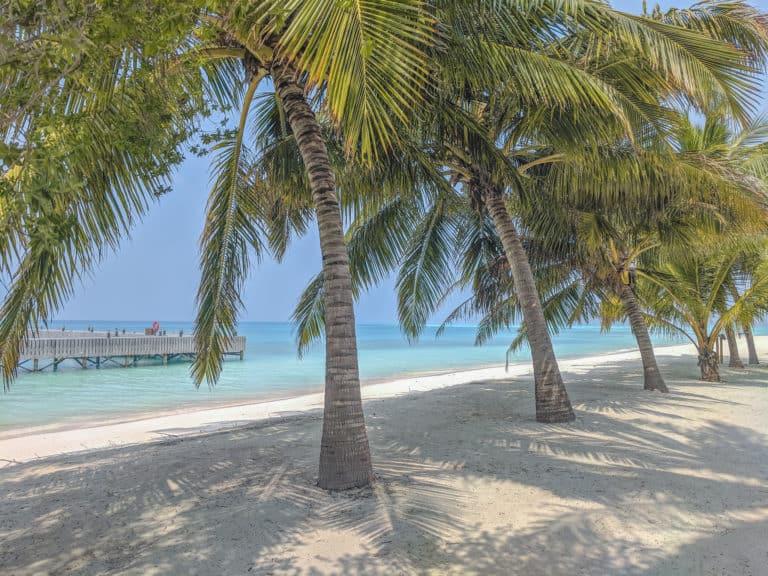 Maldives on a Budget: A Dream Vacation