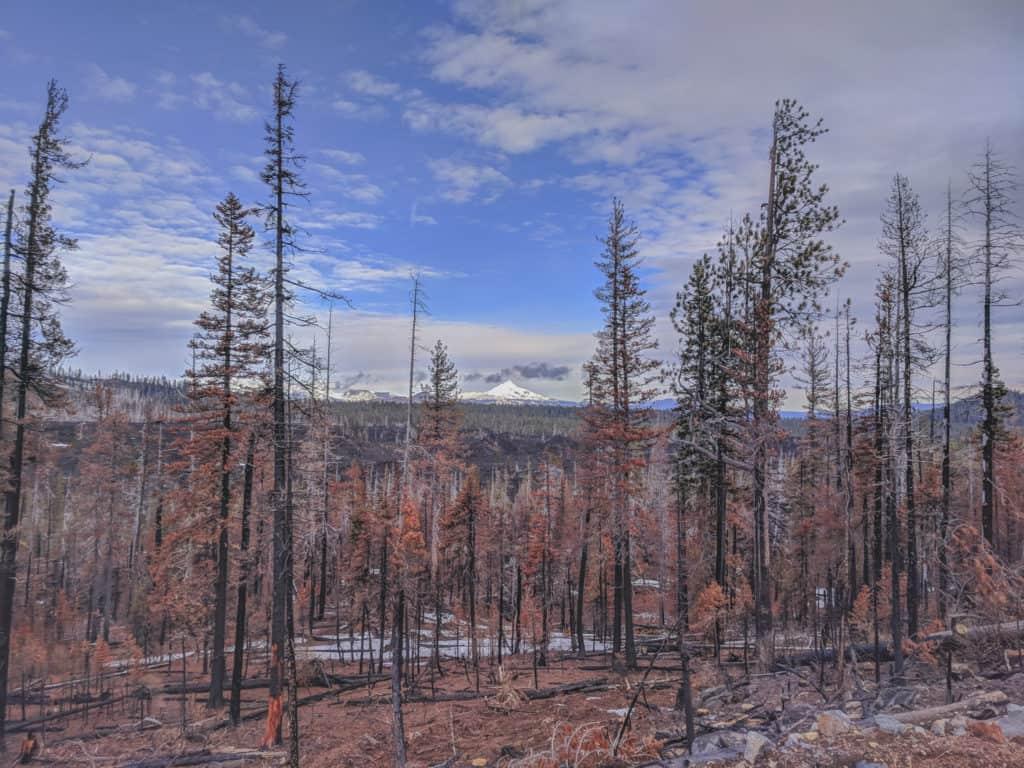 Black Butte Hike Near Sisters Oregon
