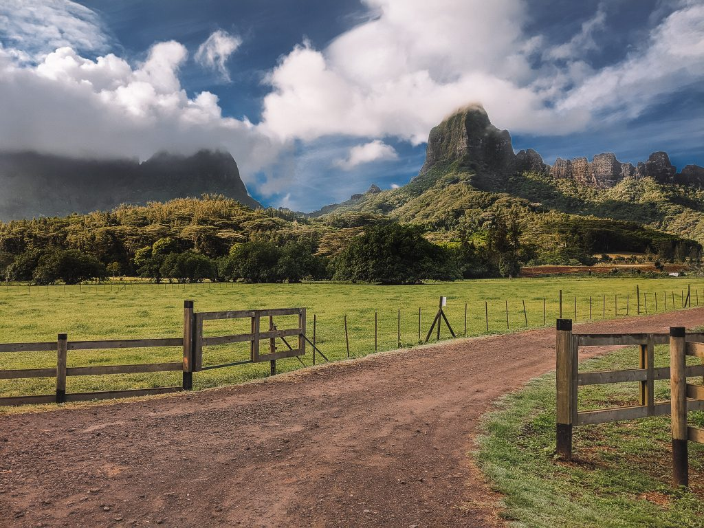 Mountain Peaks In The Distance On The Island Of Moorea. Get To Moorea By Ferry From Tahiti