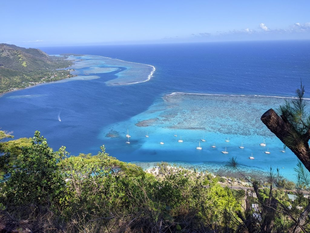 A View of the Moorea Lagoon
