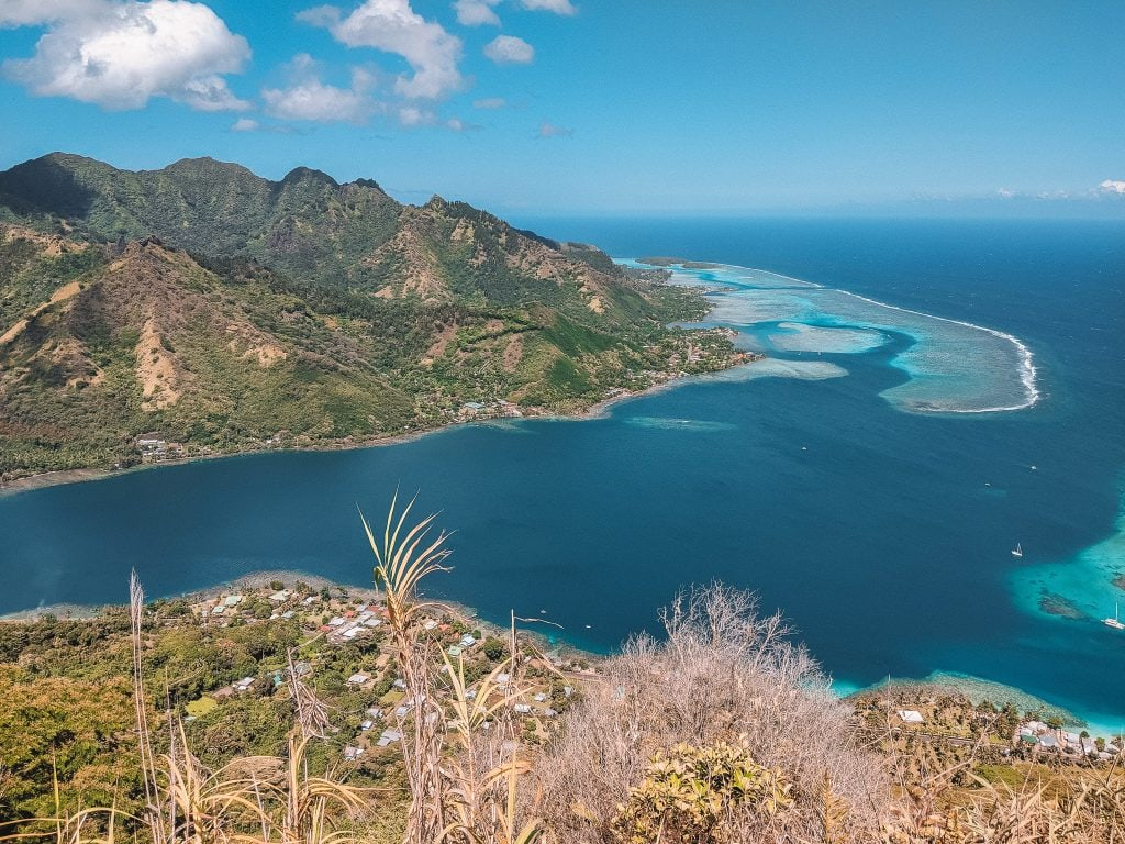 The View of Opunohu Bay From The Top Of Mount Rotui