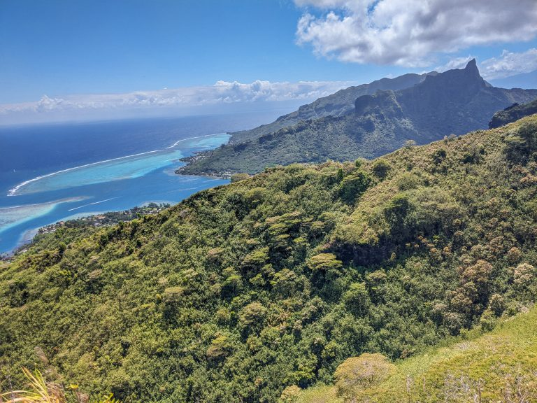 Read This Before Your Rotui Hike In Moorea