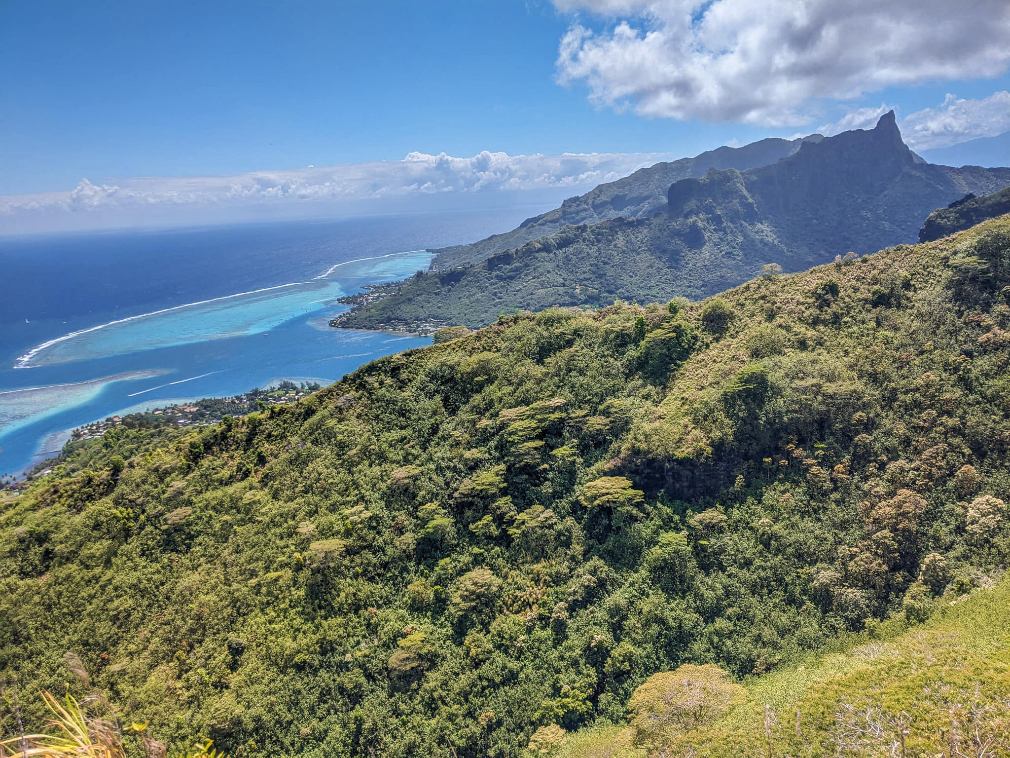 A View of Cook's Bay From Mount Rotui
