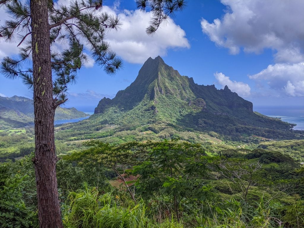 A View From Three Pinus Pass Hike of Opunohu and Cook's Bay. Both of These Bays Are Great Places To Stay In Moorea.