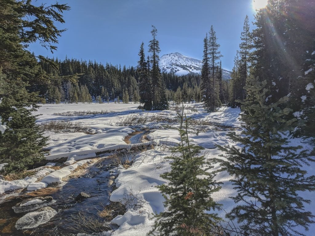 A Snowy View of Mount Bachelor From The National Forest.
