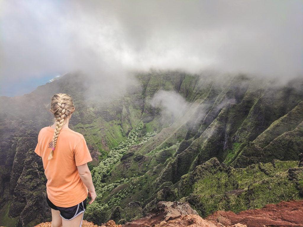 Nualolo Trail View of the Na Pali Coast.