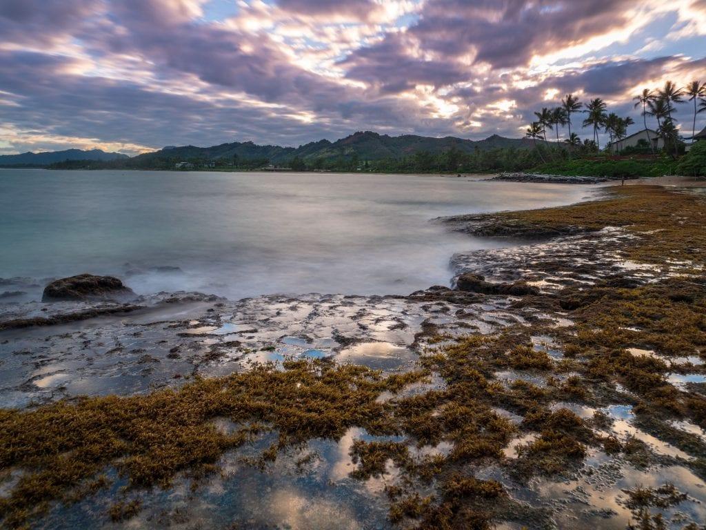 The Sun Setting On The Beach In Kauai.