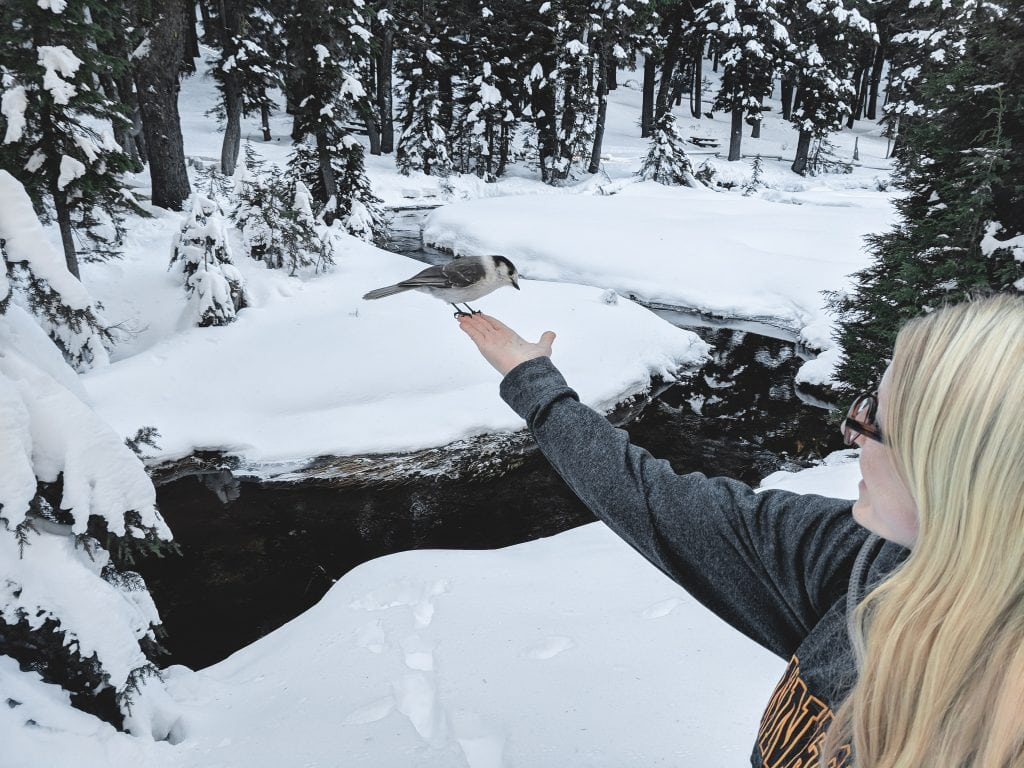 Laura Holding A Bird At Todd Lake in Bend, Oregon.
