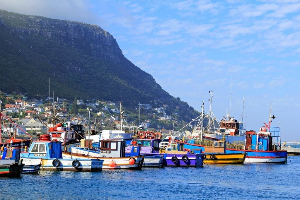 A View of the Town in Kalk Bay.