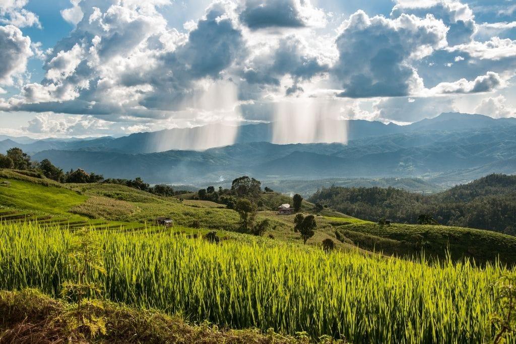Where. ToStay in Chiang Mai - Doi Saket Rice Terraces