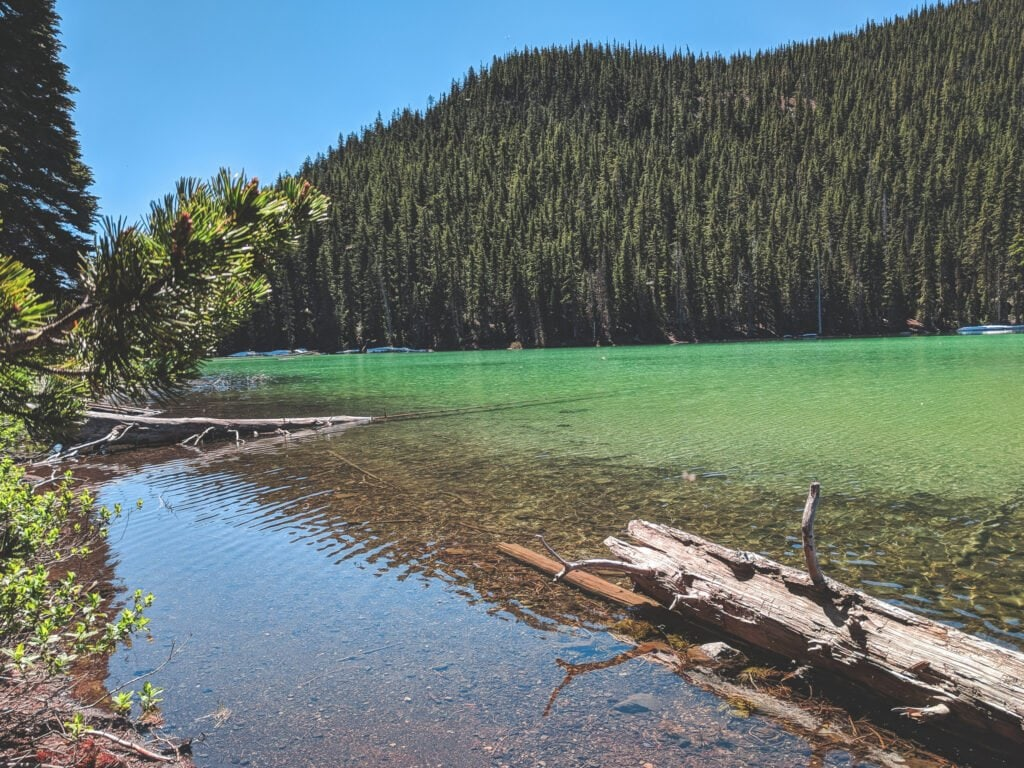Devil's Lake Campground Is The Perfect Place To Go Camping Near Bend, Oregon.
