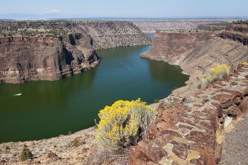 The Cove Palisades Campground.